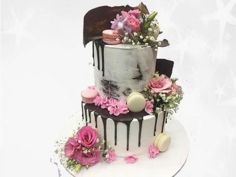 Novelties Cakes-N496