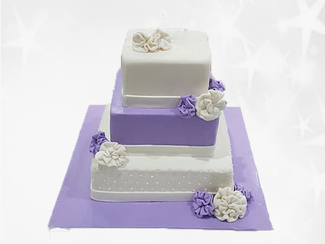 Engagement Cakes-E009