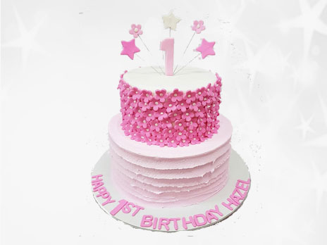 Novelties Cakes-N498